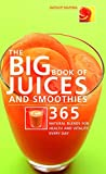 Breville BJS700SIL Big Squeeze Slow Juicer