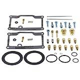 All Balls Racing 26-1789 Carburetor Rebuild Kit