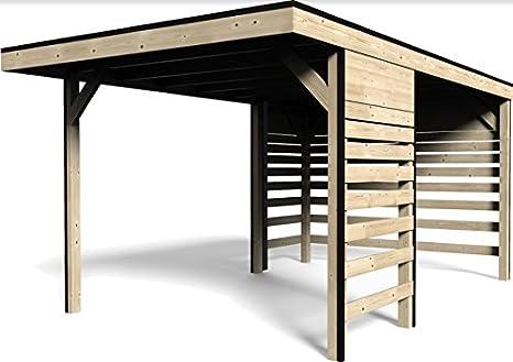Decor et jardin Garaje rimessa de madera Carport dimensiones 300 x 480 H 237 cm: Amazon.es: Jardín