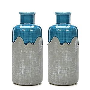 41R-52rsgRL._SS300_ Beach Vases & Coastal Vases