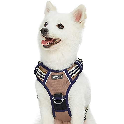 Blueberry Pet Padded Training Dog Harness