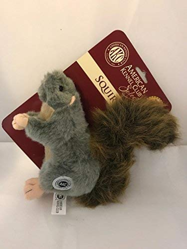 (AKC American Kennel Club Plush Squirrel with Squeaker Premium Dog Toy)