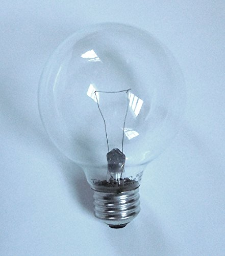 GE Crystal Clear Decorative Incandescent G25 Globe Light Bulb, 2.7 Year Life, 6 Pack (40 Watts)
