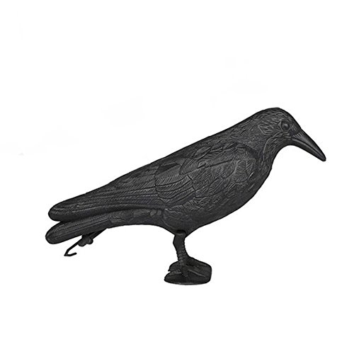 SmartHS 6PCS Crow Decoy Flock Coated Shell Crow Bird Decoys Stand Body Feet Stake for Hunting Shooting