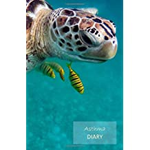 Asthma Diary: 1 Year undated Asthma symptoms tracker including Medications, Triggers, Peak flow meter section, charts and Exercise tracker. Monday start week. 8.5' x 5.5'. (Sea turtle cover).