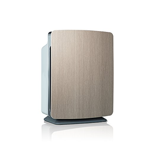 Alen BreatheSmart FIT50 Air Purifier for Bedrooms & Living Rooms - HEPA Filter for Pet Dander & Odor - 900 sqft - Weathered Gray