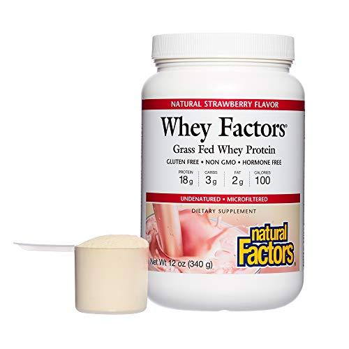 100% Whey Natural Strawberry - Natural Factors - Whey Factors, 100% Natural Whey Protein, Strawberry, 17 Servings (12 oz)