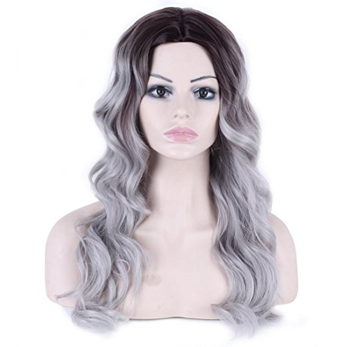 Long Curly Wigs, Inkach Trendy Womens Middle Part Wave Grandma Ombre Grey Heat Resistant Synthetic Wigs