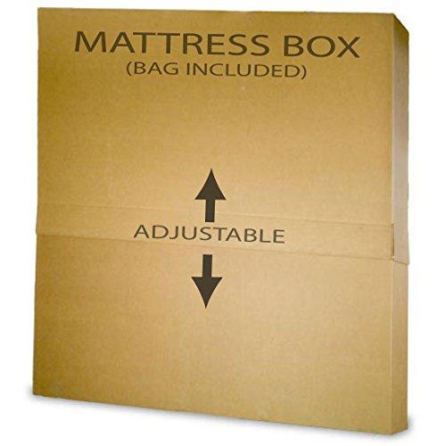 Mattress Encasement Mattress Protector For Bed Bugs Full