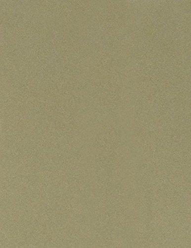 8 1/2 x 11 Paper - Moss Green (50 Qty.) B007GDVTJK