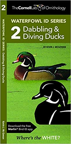 Waterfowl ID Series: 2 Dabbling & Diving Ducks: Kevin J