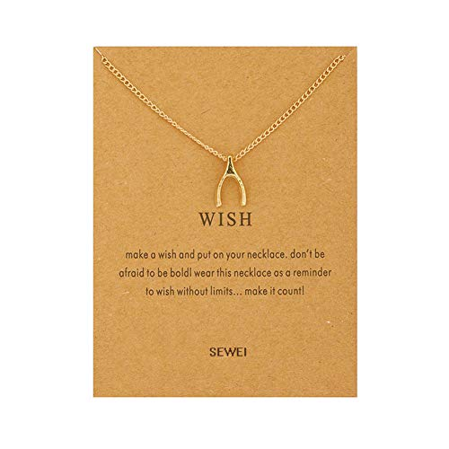 (SEWEI Wishbone Necklace Friendship Necklace with Message Card Wish Card (Golden Wishbone))