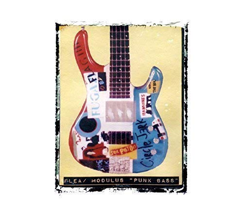 (Flea Bass Guitar art print Red Hot Chili Peppers)