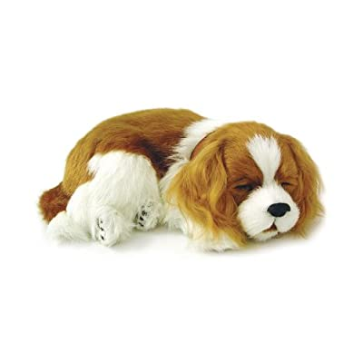 Wind & Weather Perfect Petzzz Cavalier King Charles Puppy: Toys & Games