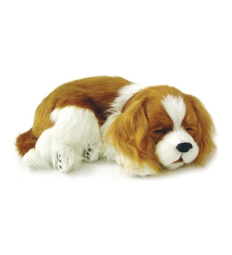 Perfect Petzzz Cavalier King Charles Plush by Perfect Petzzz