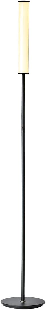 O'Bright Dimmable LED Cylinder Floor Lamp, All Range Dimming, Minimalist Standing Pole Lamp / Torch Lamp, Floor Lamps for Living Room, Bedrooms, Porch, Patio, and Office, Black