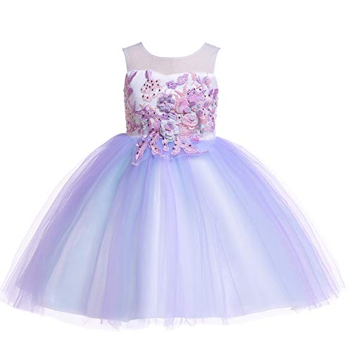 Weileenice 2-14T Girls Costume Cosplay Dress Rainbow Tulle 3D Embroidery Beading Princess Dresses (13-14Years, Lilac Purple)