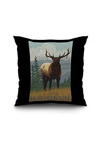 Yellowknife, Canada - Elk Scene