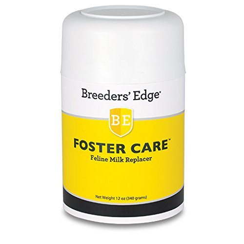 Breeders Edge Foster Care Feline Powdered Milk Replacer 12 oz for kittens & cats
