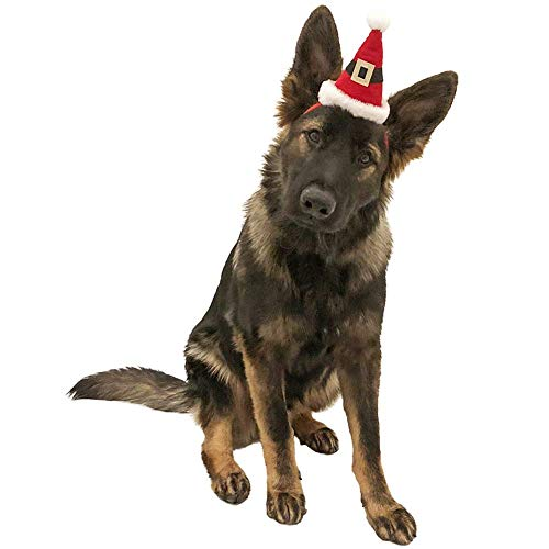 Midlee Dog Santa Hat Headband for Large Dogs -