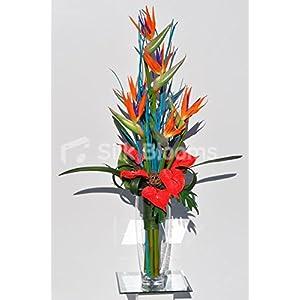 Exotic Orange Bird of Paradise, Red Anthurium and Blue Mitsumata Floral Table Arrangement 59
