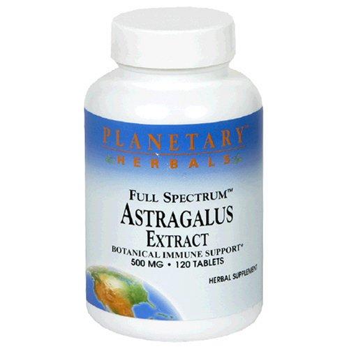 Planetary Herbals Full Spectrum Extrait d'astragale, 500 mg, comprimés, 120 comprimés (lot de 2)