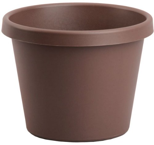 Flower Pots Chocolate - Akro-Mils LIA08000E21 Classic Pot, Chocolate, 8-Inch