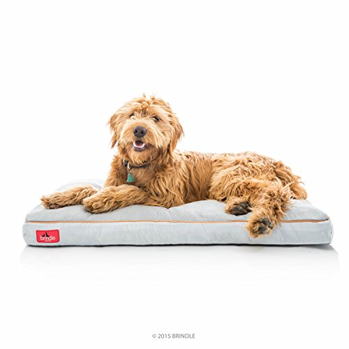 Brindle Soft Shredded Memory Foam Dog Bed with Removable Washable Cover - 40in x 26in - Stone
