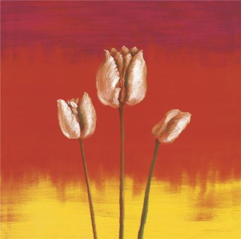 The High Quality Polyster Canvas Of Oil Painting 'Three Tulips' ,size: 30x30 Inch / 76x77 Cm ,this Beautiful Art Decorative Prints On Canvas Is Fit For Gift For Relatives And Home Decoration And Gifts ()