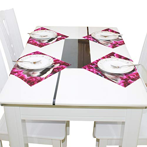 IDO Heat Resistant Placemats for Kitchen Table Mats for Dinning Room,Pink Flowers Cuties Animal Guinea Pig Washable Insulation Non Slip Placemat 12x12 inch Set of 4 ()