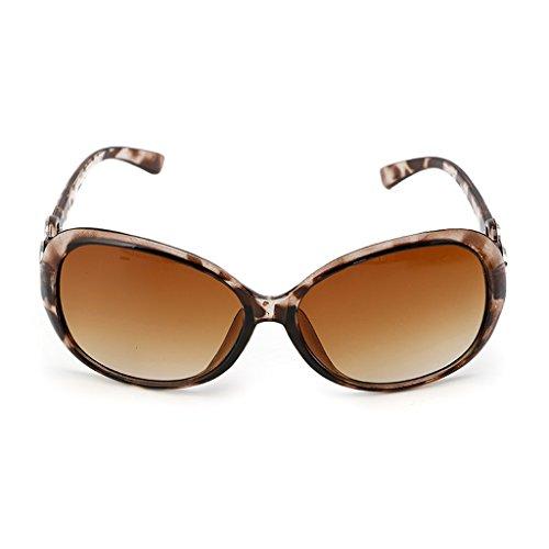 Retro 141mm Gafas Frame Width de Clásico Hot Mujer Marrón Diseño Lamdoo Claro Morado Sol para Sxn54q7w