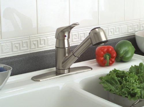 Premier 120161LF Sonoma Single-Handle Kitchen Faucet