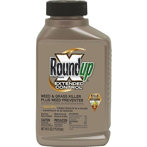 roundup-extended-control-weed-grass-killer-plus-weed-preventer-1-each