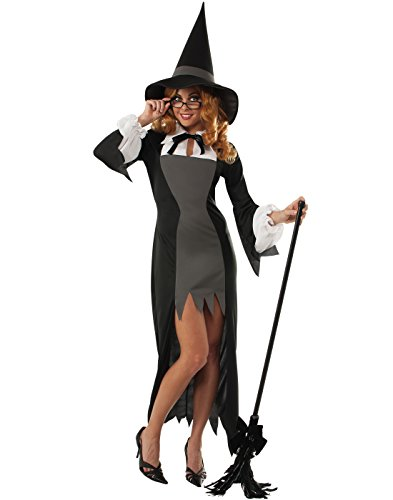 Rubie's Costume Women's Adult Puritan Witch Costume, Multi, Small (Bewitched Costume)