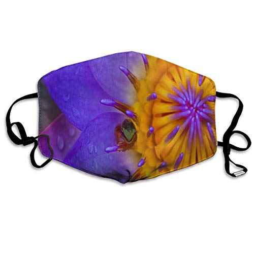 Anti Dust Mask Fondo De Pantalla Water Lily Frog Face Mask Winter Healthy Windproof For Unisex Gift]()