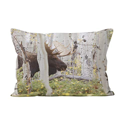 Suklly Papa Moose in The Aspens Cabin Unique Hidden Zipper Home Decorative Rectangle Throw Pillow Cover Cushion Case 20x36 Inch King One Side Design Printed ()