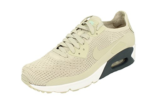 Nike Air Max 90 Ultra 2.0 Flyknit Mens Running Trainers 875943 Sneakers Shoes (UK 6 US 6.5 EU 39, Pale Grey 006)