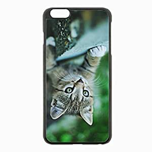 iPhone 6 Plus Black Hardshell Case 5.5inch - kitten muzzle climb paw Desin Images Protector Back Cover