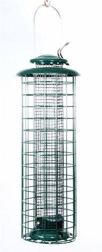 (Audubon Squirrel-Resistant Caged Screen Feeder   Model NACAGE)