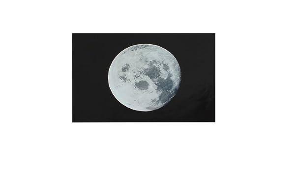 Amazon.com: eDealMax Negro Gris Luna Imprimir etiqueta piel protectora Para el arte de la etiqueta 15.61514 Notebook: Electronics