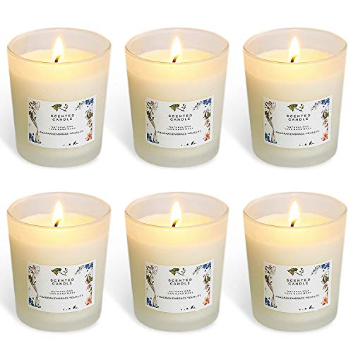 YYHC Set of 6 Scented Candles 100% Soy Wax Glass, Home Fragrance Candle Gifts