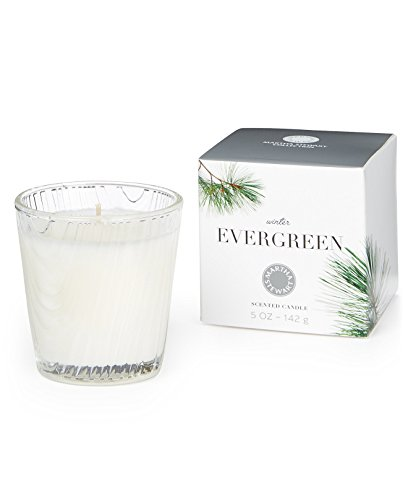 MARTHA STEWART-EDI/RWI/MAESA LLC Martha Stewart Collection Candle Winter Evergreen - Evergreen Votive Candle