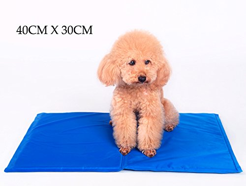 Elome(이로미) 애완 동물 매트 개 서늘한 패드 여름용 냉감 시원한 느낌 상쾌 더위 대책 방수 간이 쿨 시트 고양이 / 토끼 / 중소형 개 전용  40CM x 30CM / 50CM x 40CM / 중대형 개 전용 65CM x 50CM 블루