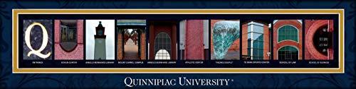 - College Campus Letter Art Quinnipiac University Quinnipiac Bold Print Unframed Poster 22x6 Inches