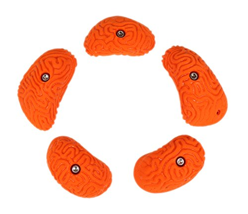 5 Large Brain Coral Pinches Set #1 | Climbing Holds | Orange by Atomik Climbing Holds