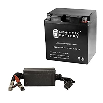 YTX30L-BS Battery for BMW R80/7, R80RT 1978-1984 + 12V 4Amp Charger - Mighty Max Battery brand product