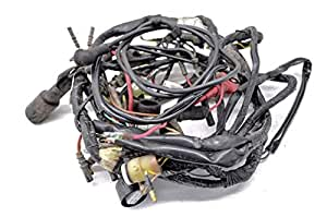 Amazon.com: Kawasaki Prairie 300 4x4 2001 2002 Main Wire ...