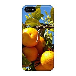 Fashionable Style Case Cover Skin For Iphone 5/5s- Oranges On The Tree Branches