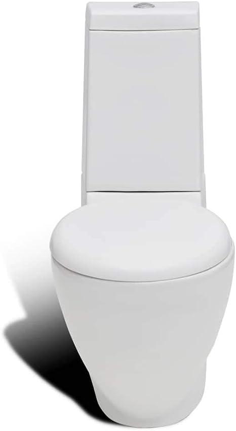 vidaXL Pack WC Inodoro Retrete de una Pieza en Cuadro Cerámico ...
