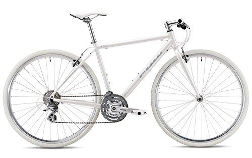 FUJI(フジ) RAIZ 3x8段変速 クロスバイク 19RAIZWH19 AURORA WHITE 19